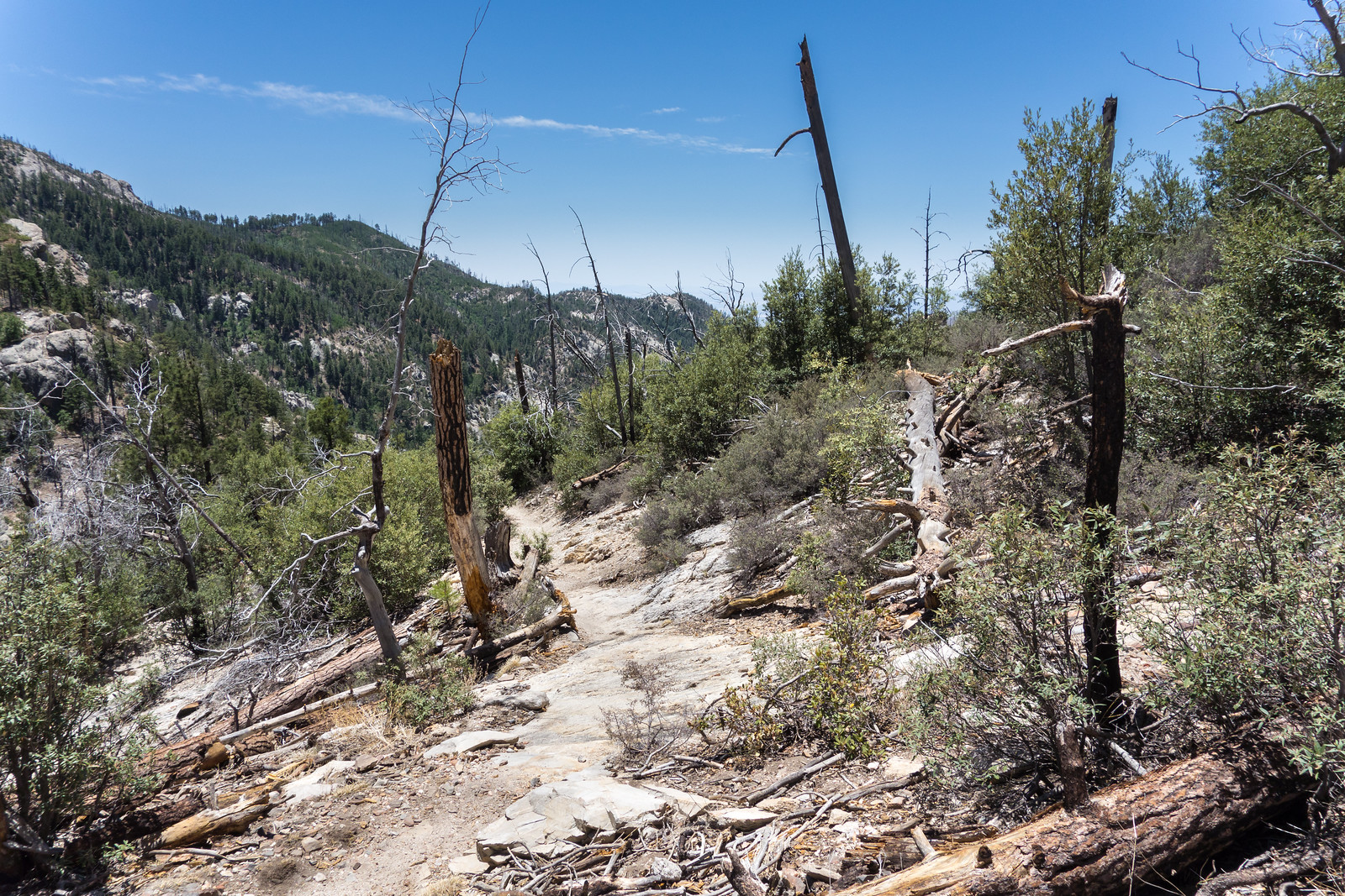 1406 Sunset Trail