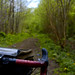Skinny Tires, Hidden Trails by Lovely Bicycle!