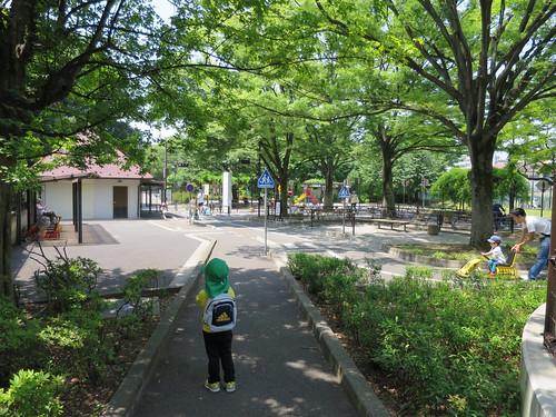 とらちゃんと世田谷公園  二回目