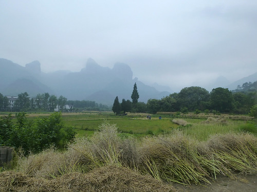 Zhejiang-Yantoucun (129)