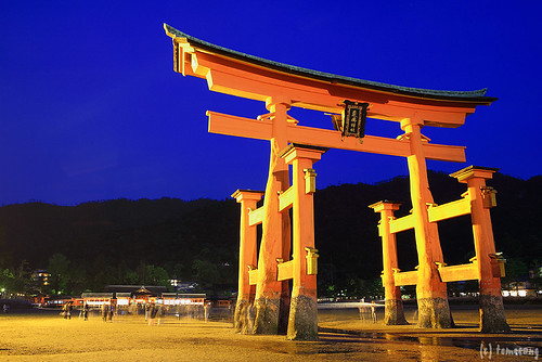 the torii gate
