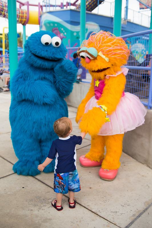 Toddler Meeting Cookie Monster and Zoe at SeaWorld #BBBestSummer #Shop
