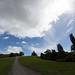 Small photo of Path, Totara Park