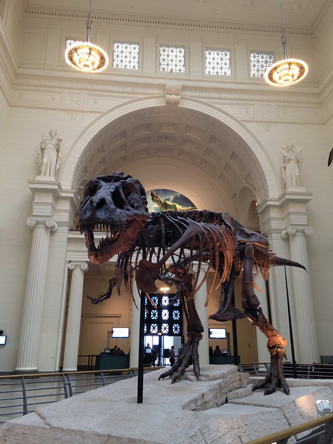 Field Museum - Sue the T-Rex