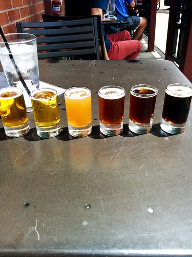 Six Sampler in the Sun