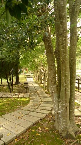 20140719-義民廟旁之河濱公園 (17)