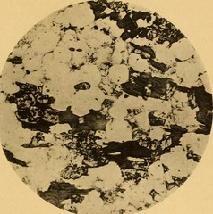 """Image from page 674 of """"The Quarterly journal of the Geological Society of London"""" (1845)"""