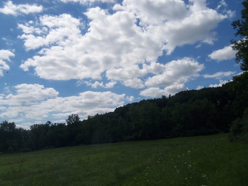 summer field illinois july godfrey