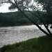Small photo of Along the Delaware