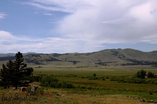 Montana Elkhorn 1_feistyharriet_July 2014