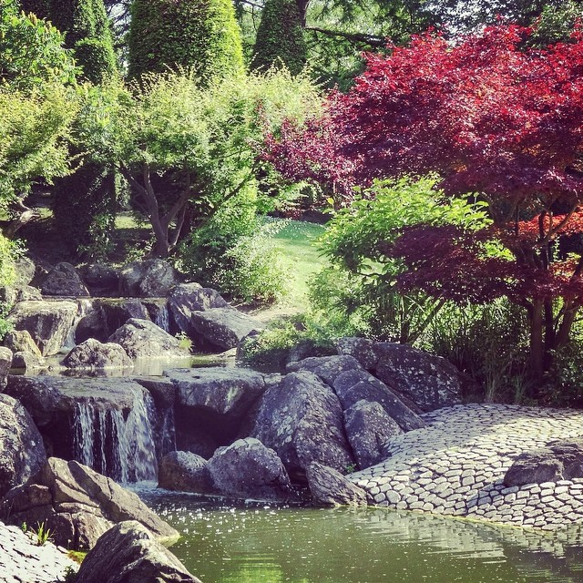 Japanese Garden in Bonn, Germany