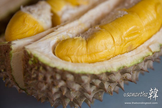 Durian - MSW