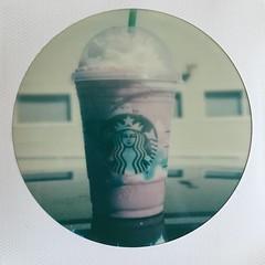 Pure sugar ✨