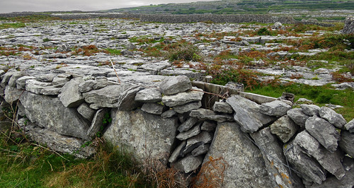 The Aran Island of Inisheer in Ireland has more rocks than just about any other place I've been to, and just about everything there is made of rocks: these rock fences appear to be there to keep other rocks from escaping