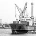 Puerto de Veracruz por daniel.olguinr