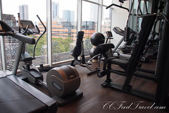 arm(0.0), chest(0.0), sport venue(0.0), muscle(0.0), barbell(0.0), physical fitness(0.0), leg extension(0.0), exercise machine(1.0), exercise equipment(1.0), room(1.0), gym(1.0),