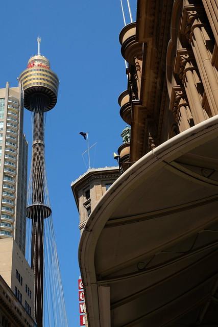 Sydney snap