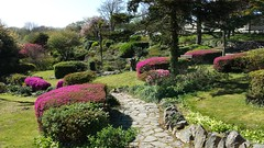 Hafan Y Mor - Rock Garden