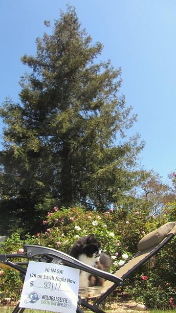 IMG_9665-001 Sammy Nasa earth day selfie