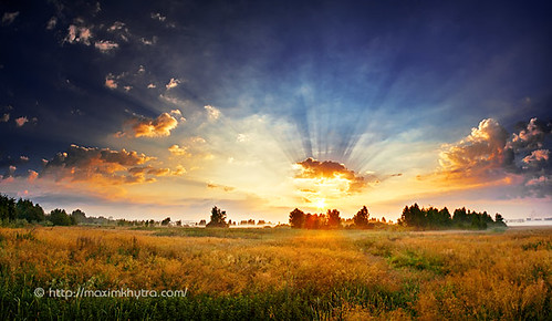 morning travel blue light sunset red summer sky panorama terrain cloud sun plant tree green nature ecology field grass yellow fog clouds forest sunrise season landscape outside dawn evening countryside open outdoor air horizon scenic halo sunny scene land environment summertime plain eco stitched sunray