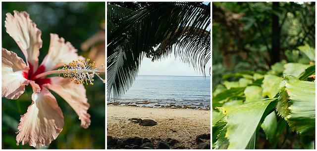 Tioman Island Malaysia
