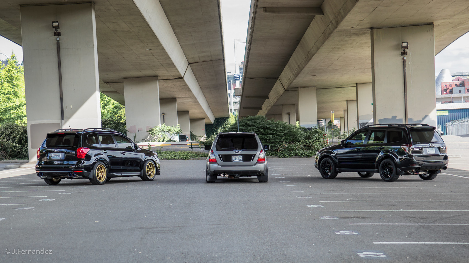 pacific northwest impromptu shoot subaru forester owners