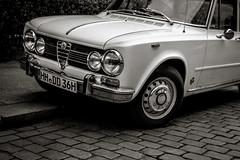 alfa romeo giulietta(0.0), sports car(0.0), automobile(1.0), automotive exterior(1.0), alfa romeo(1.0), vehicle(1.0), automotive design(1.0), antique car(1.0), land vehicle(1.0), luxury vehicle(1.0),