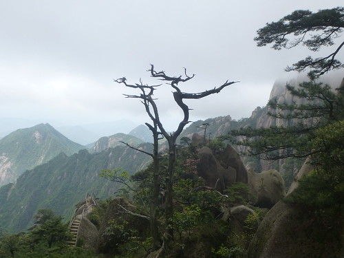 Jiangxi-Sanqing Shan-1 sentier de l'est (77)