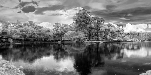 silversprings sky blackandwhite bw panorama usa cloud reflection tree water river landscape ir boat spring dock florida cloudy porch infrared watercraft edrosack