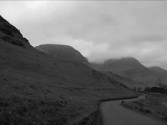 HONISTER VIDEO