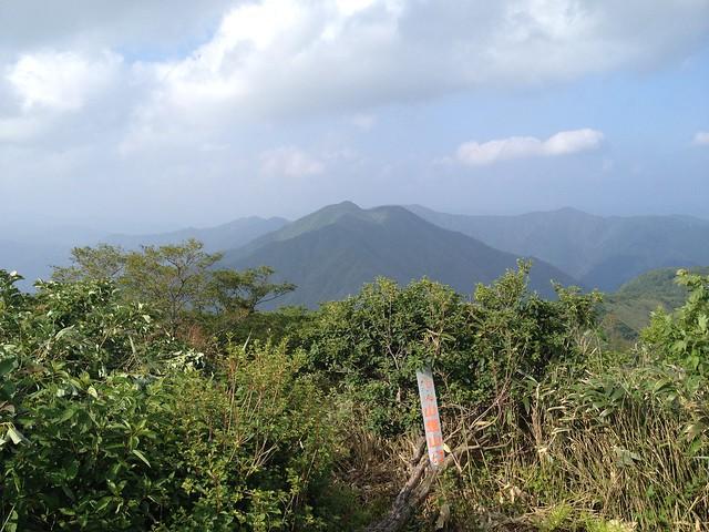小津権現山山頂から花房山を望む