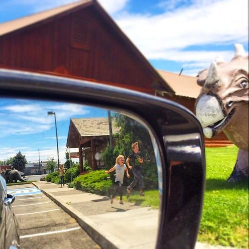 Checking the dinos in Granger, WA