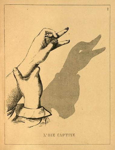 003-Ganso cautivo-Ombromanie. Premièr série-1860- The Art Walters Museum