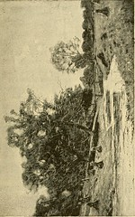"""Image from page 72 of """"Autumn"""" (1892)"""
