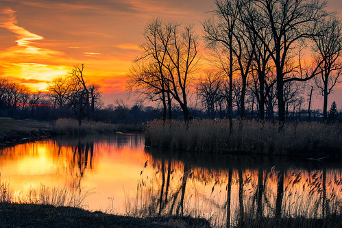 canon70200mmf28 sunset landscape silhouette nature highlandindiana nwi lake water trees sky