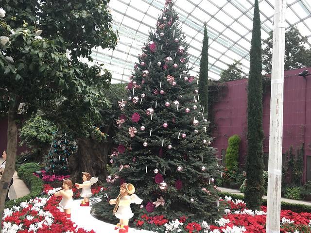 季節によって展示の雰囲気も変わるようで、クリスマスムード全開。