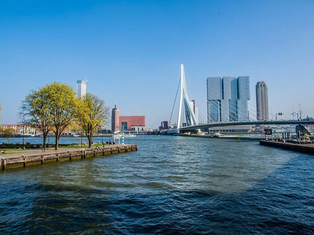 Erasmusbrug and De Rotterdam. #rotterdamcity #rottergram #rotterdam #erasmusbrug #derotterdam #photography #netherlands