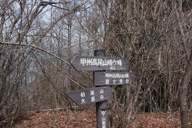 20150412-甲州高尾山-0395.jpg