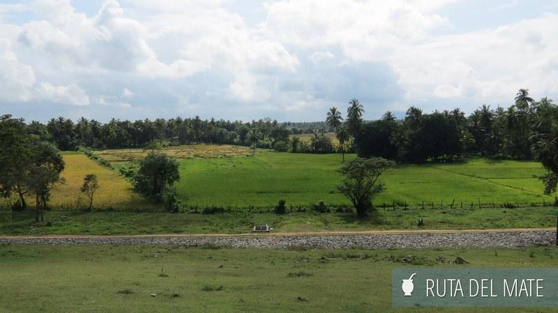 Polonnaruwa Sri Lanka (1)