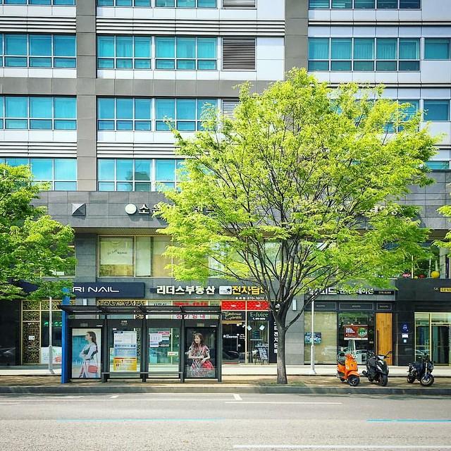 서울, 버스 정류장...       #instagram #instaplace #instastill #Korea #Seoul #Dogokdong #city #landscape #street #bus #station #cityscape #서울 #도시 #풍경 #길거리 #버스 #정류장 #도시풍경
