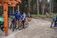 Dockton Forest Mountain Bike Park