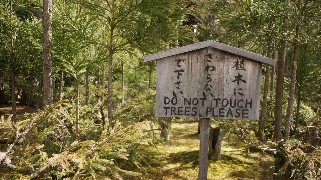 Do Not Touch Trees, Please