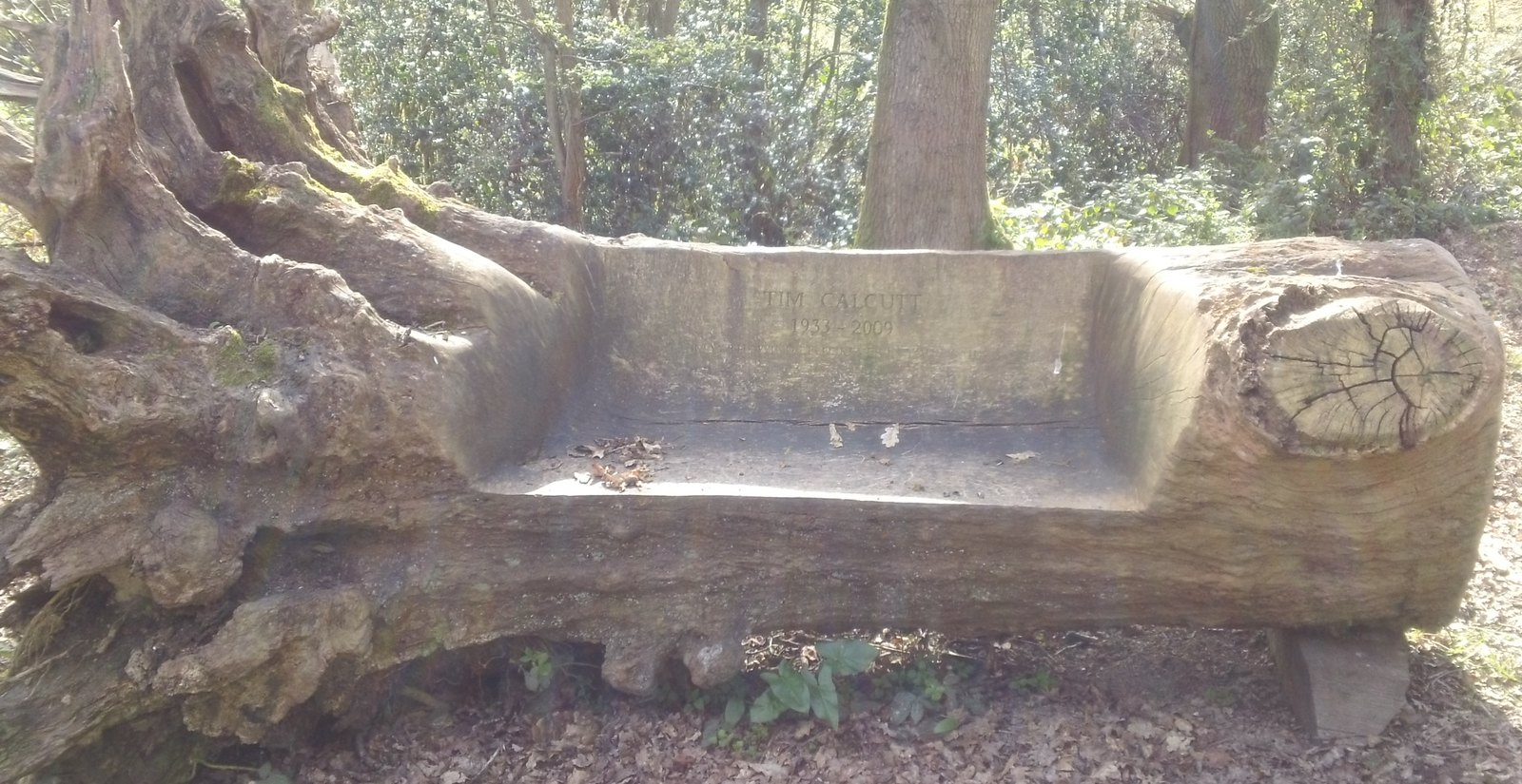 'Tim Calcutt 1933 - 2009' Carved wooden bench in woodland