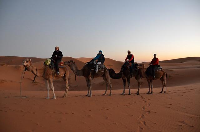 Encima de nuestros dromedarios antes de inicial la ruta por el desierto de Marruecos