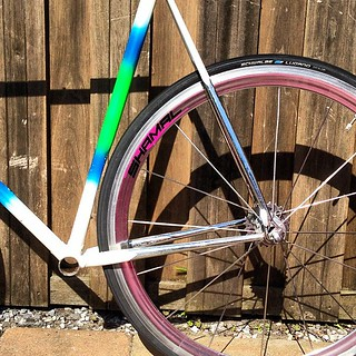 New project for the wife. Look at that tight geometry.  #denti #columbus #tubing #lifeistooshorttorideshitbikes #fixiefamous #fixed #fixedgear #fixie #vintage #vintagebike #classic #corsa #corsabike
