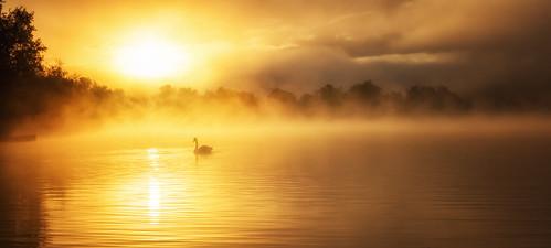 morning sunset lake misty see nebel sonnenaufgang morgen tübingen