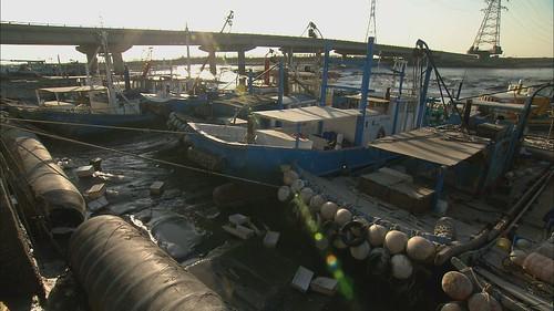 高雄海岸和漁港的採樣也汙染嚴重