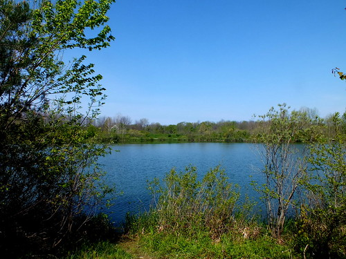 Hawthorn Pond Natural Area