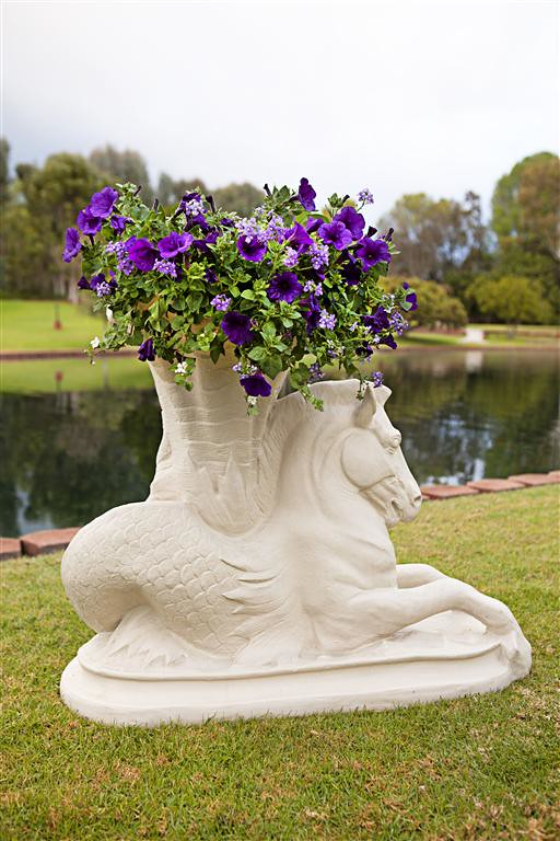 Sea Horse Planter