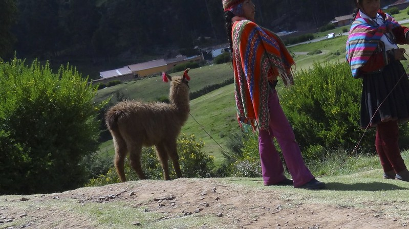 cuzco too 17